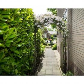 dušas siena, daļēji matēts ESG stikls, 100x195 cm
