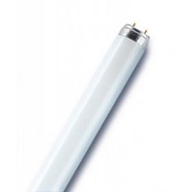 Glābšanas veste 68x36x7.5cm 40-50 kg oranža