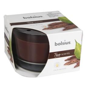 Spogulis Diana ar rāmi 160x60cm