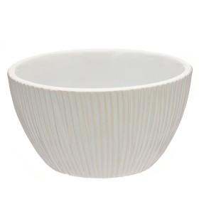 Svece stabs Bolsius oranža 4.8x8cm