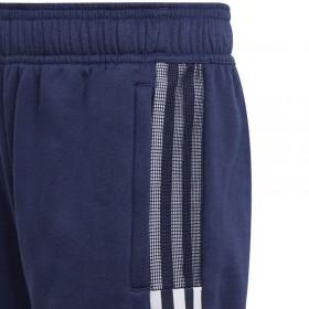 saulessargs, 4x4 m, kvadrāta forma, dzeltens oksforda audums